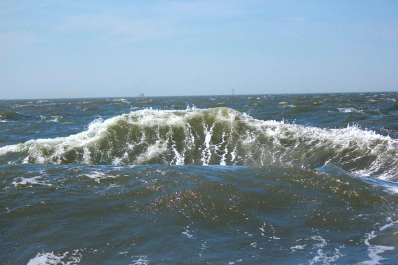 Cuxhaven – Schifffahrt zu den Seehundbänken – 08.05.2011   Aus ...